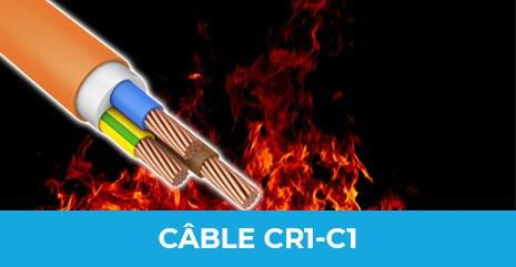 cr1c1V1